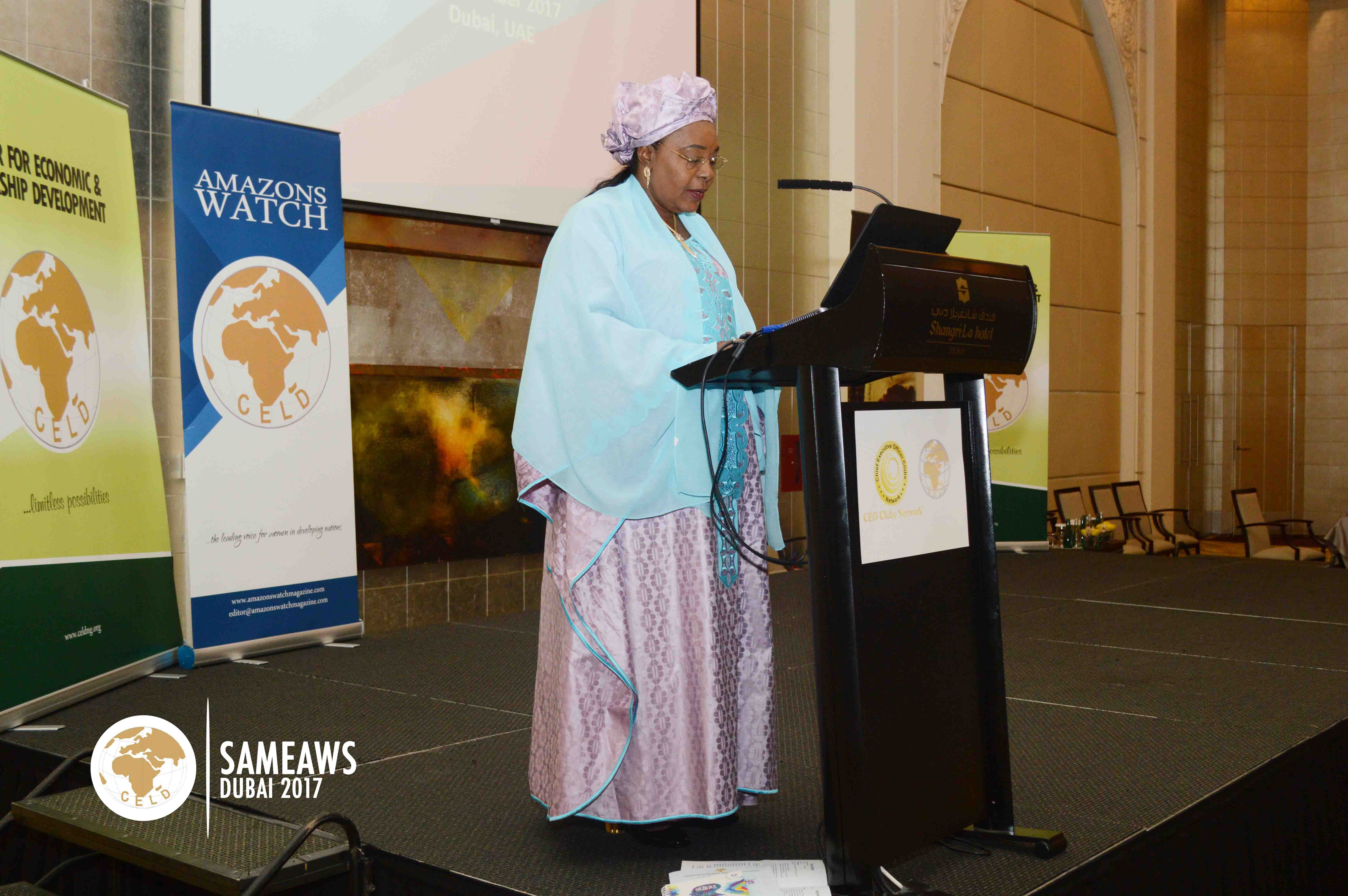 H.E. Aissata Mohammadu Issoufou (First Lady, Republic of Niger) making a special presentaion during SAMEAWS 2017